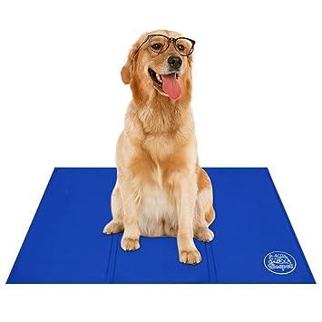 Bravpet Alfombra Refrescante , Relleno Autorefrigerante para mascotas, Comodidad para Perros y Gatos: Amazon.es: Productos para mascotas