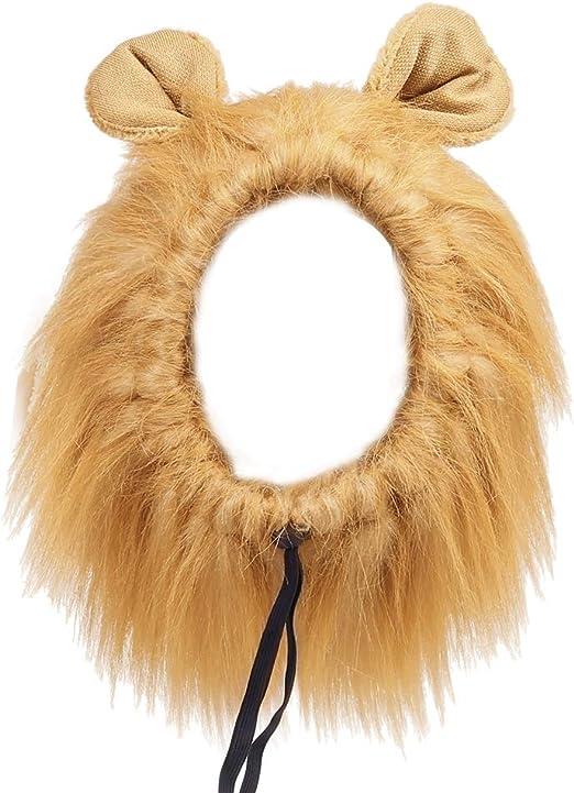 Hffheer Peluca de Perro Sombreros Fibra sintética Disfraz de Mascota Melena de león Pelo Peluca de Melena de Perro Mascota de Moda para Fiesta de Fiesta Cosplay: Amazon.es: Productos para mascotas