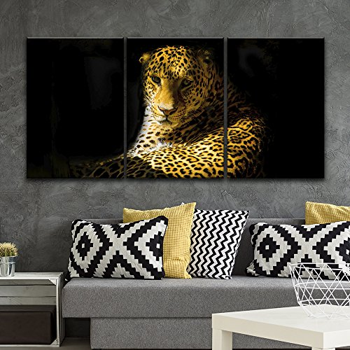 3 Panel Leopard in Black Background Gallery x 3 Panels