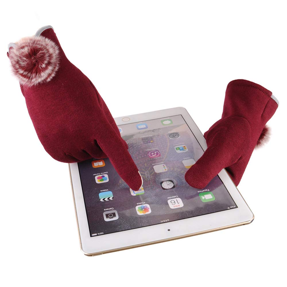 Diadia Touch Screen Gloves Windproof Anti-Slip Thermal Warm Smartphone Gloves Design for Texting Driving Cycling Outdoors Running Red 2 Winter Gloves