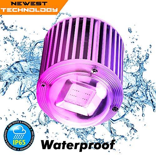 ZOTRON Waterproof Real Grow Light 60W, Newest Technology LED