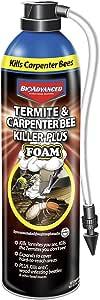BioAdvanced 700420A Termite & Carpenter Bee Killer Plus Pesticide, 18 oz, Foam Spray