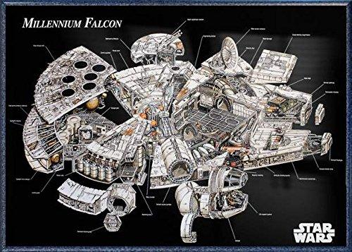 Star Wars - Framed Movie Poster / Print (The Millennium Falcon - Cutaway / Schematics) (Size: 36