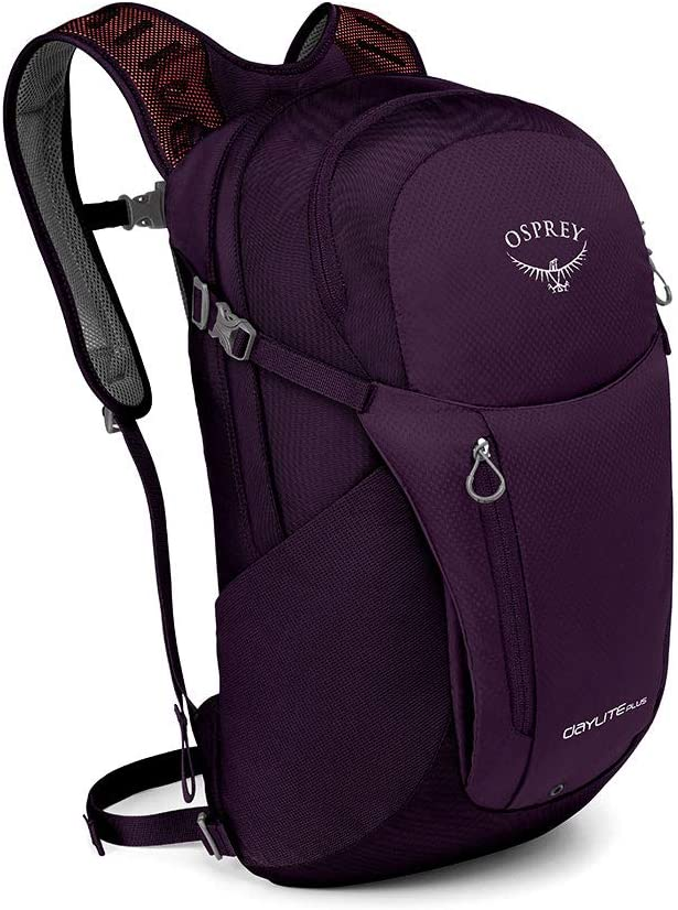 The Osprey Packs Daylite Plus Daypack travel product recommended by Mike Miller on Lifney.