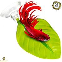 3 Leaf Hammocks for Betta Fish -- Lightweight and Realistic Resting Spot (16*9cm) - BPA-Free, Practical, Dark Green Bed - Comfortable & Safe - Easily Attaches with included 3 Suction Cup