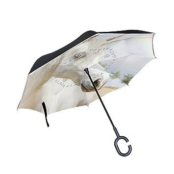 ALAZA Doble Capa invertido Paraguas Coches inversa Paraguas Unicornio y Prueba a Prueba de Viento del