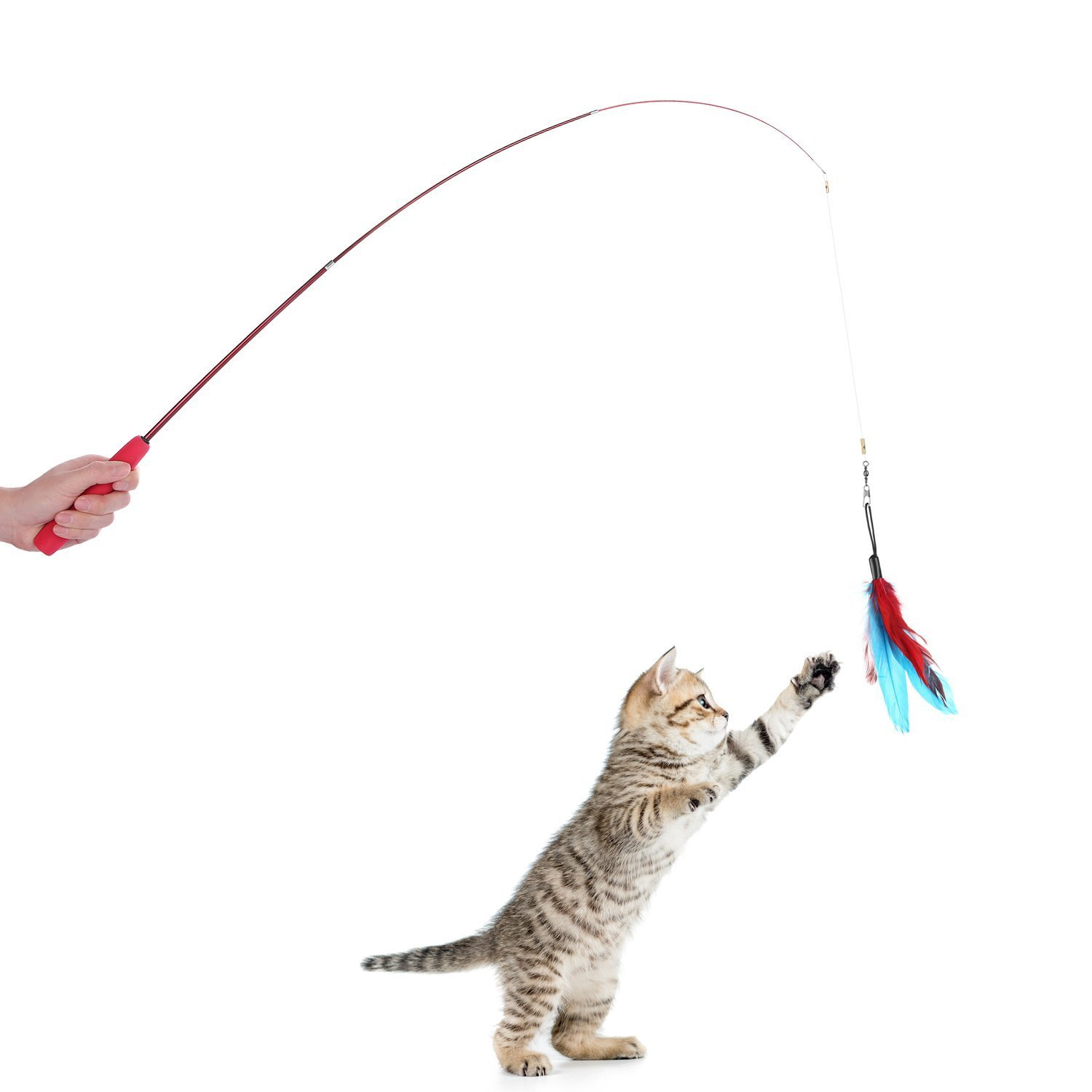 8 pcs assorted feather cat toy etrech retractable wand rod for Retractable cat wand