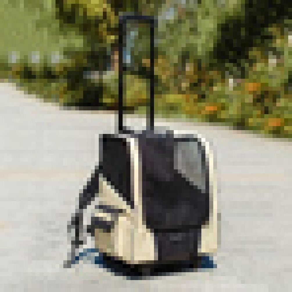 Portable Pet Dog Carrier Travel Dog Pet Puppy Carrier Multi-Functional Draw-Bar Case Pet Bags Shoulder