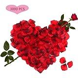 3000pcs Petali di Rosa, Petali di Rosa Rossa in Seta per Decorazione di Matrimonio, Decorazioni di San Valentino, Proposta di Matrimonio
