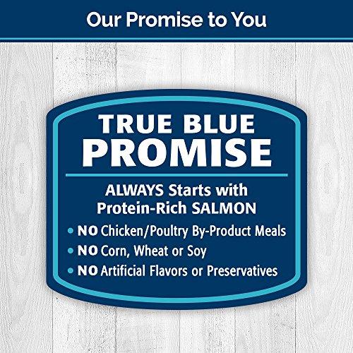 BLUE Kitty Yums Salmon Soft-Moist Cat Treats 2-oz