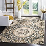 "Safavieh Lyndhurst Collection LNH341C Slate Blue and Beige Area Rug, 8'11"" x 12′ Review"