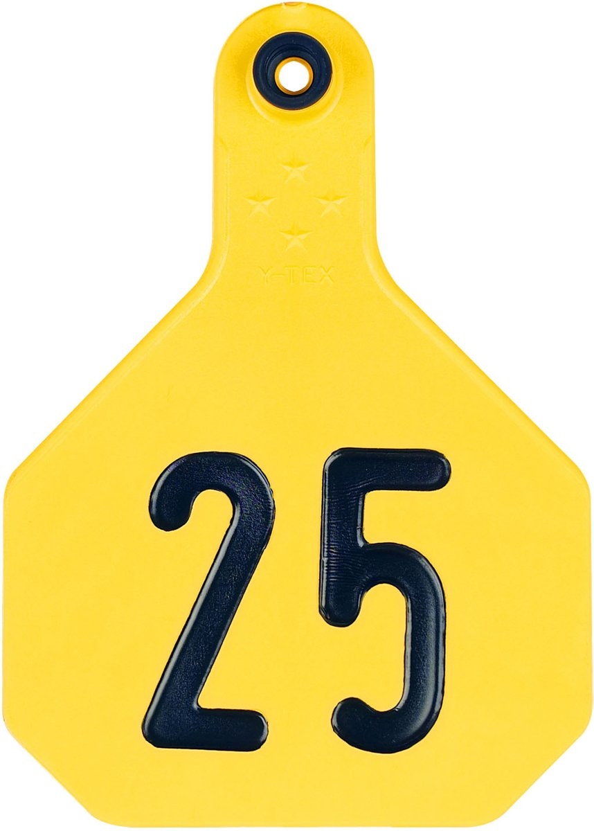 Y-TEX CORPORATION Large Yellow Tag (25 Pack) by Y-TEX CORPORATION