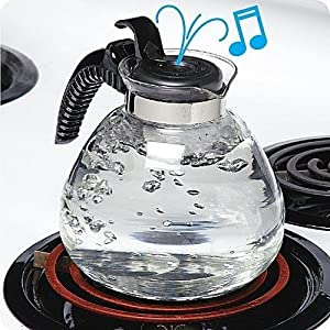 8 Cup Glass Whistling Kettle for Gas & Electric Stoves Budget Priced