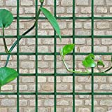 V Protek Ultimate Tomato Cage Raised Herb Bed Plant Cage with PVC Coated Wire Mesh Fence for Flowers Plants Support
