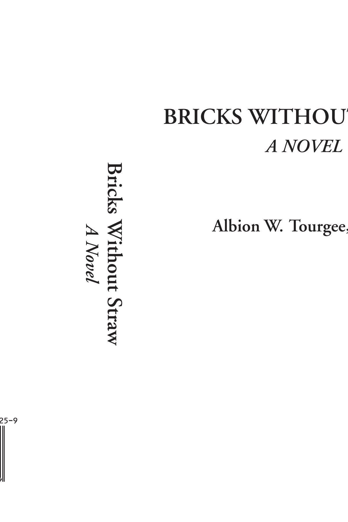 Bricks Without Straw (A Novel) pdf epub