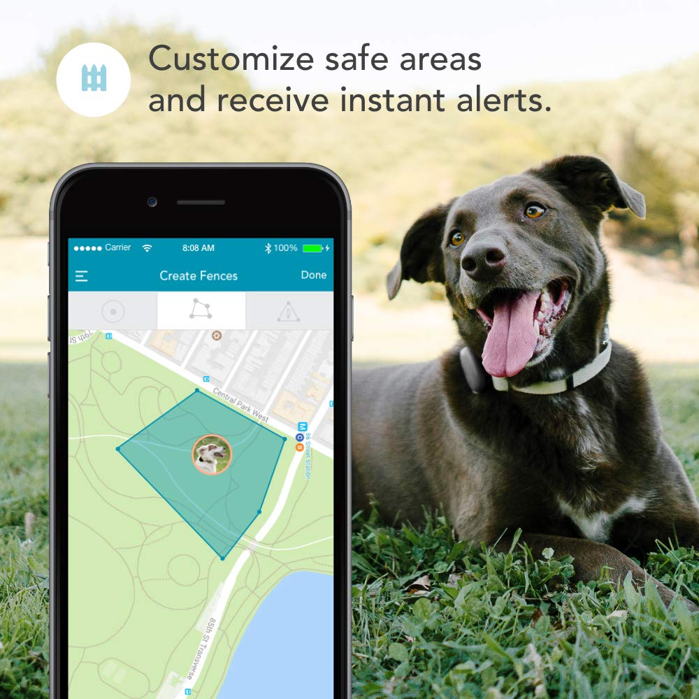 Findster Duo+ Pet Tracker Free of Monthly Fees - GPS Tracking Collar for Dogs and Cats & Pet Activity Monitor - Tracks 2 Pets by Findster (Image #3)