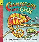 img - for Chameleons Are Cool: Read and Wonder book / textbook / text book