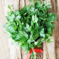 Eden Brothers Parsley Seeds