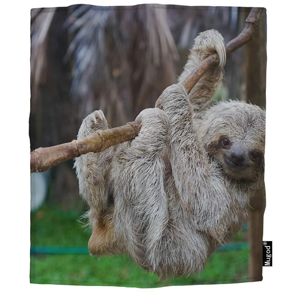 Mugod ナマケモノスローブランケット 3段 ツリーに吊るせる ヘアー レイジースロー 野生動物 ソフト 心地良い ファジー 暖かい フランネル ブランケット 装飾 赤ちゃん 幼児 おくるみ 犬 猫 30 x 40インチ 40x50 Inch YELP-BLK-B294 40x50 Inch Ab293-1 B07L9ZDRJK