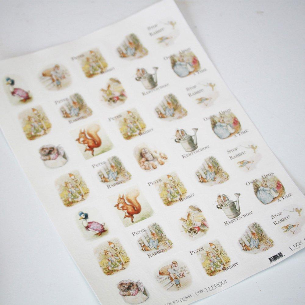 Scrapbook paperchase - Peter Rabbit Themed Sticker Sheet 35 Square Stickers Beatrix Potter
