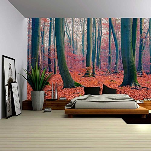 Beautiful Red and Orange Leaf Covered Forest Wall Mural
