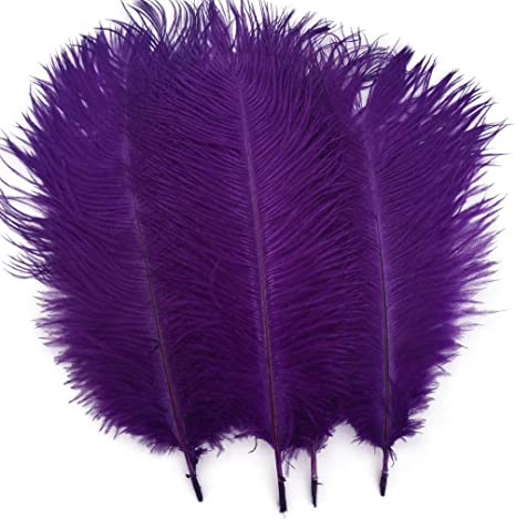 Shekyeon Red 10-12inch 25-30cm Ostrich Feather Home Decoration DIY Craft Pack of 10