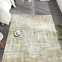 jinchan 3-Feet x 5.25-Feet Modern Abstract Colorful Floorcover Indoor Low Pile Area Rug (Green)
