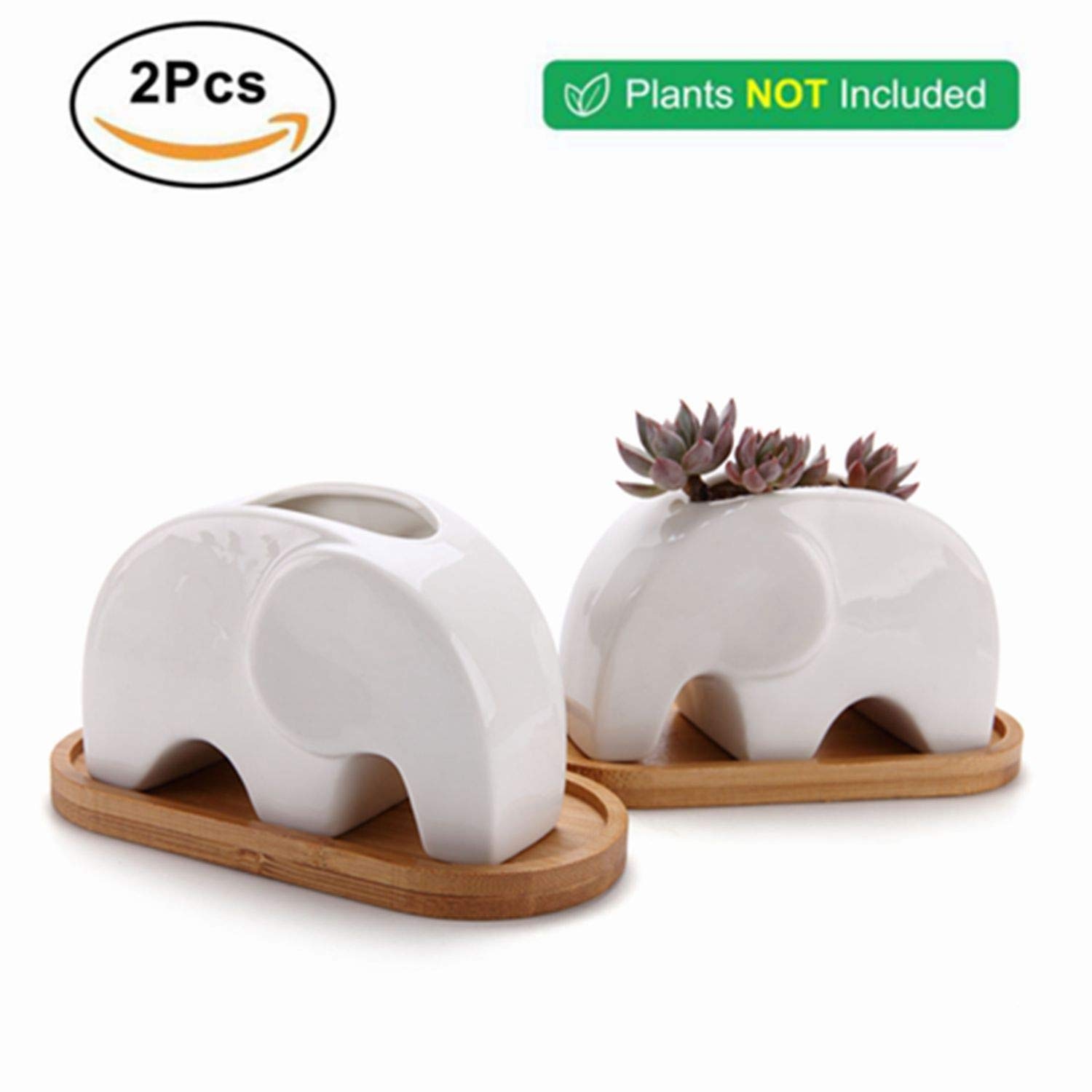 T4U Succulent Plant Pot Cactus Ceramic Planter with Bamboo Tray Pack of 2-4.8'' Elephant, Small Container White Animal Window Box Decorative Ornament Office Desktop Wedding Birthday by T4U (Image #5)