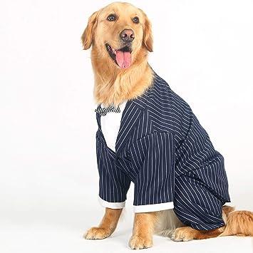 Amazon.com: LOVEJIE Traje de boda para perro, disfraz de ...