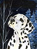 Cheap Caroline's Treasures SS8370CHF Starry Night Dalmatian Flag Canvas, Large, Multicolor