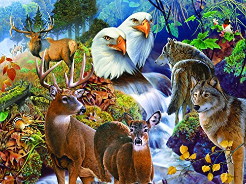 SunsOut Forest Neighbors 1000 Piece Jigsaw Puzzle