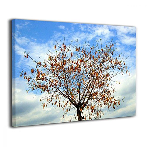 TRdY Page A Tree in Autumn Season Painted Canvas Inner Framed Wall Decor Modern Artwork for Office Home Decor Pictures Ready to Hang for Living Room Bathroom -