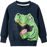 Popshion Moletons para meninos Dinossauro Camisetas infantis de manga comprida Pulôver Desenho Desenho Camisetas esportivas p