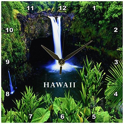 Hawaii Waterfall (3dRose dpp_80769_1 Waterfall on Big Island of Hawaii Wall Clock, 10 by 10-Inch)