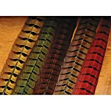 Hareline Ringneck Pheasant Tail Feathers Assorted Colors - Fly Tying