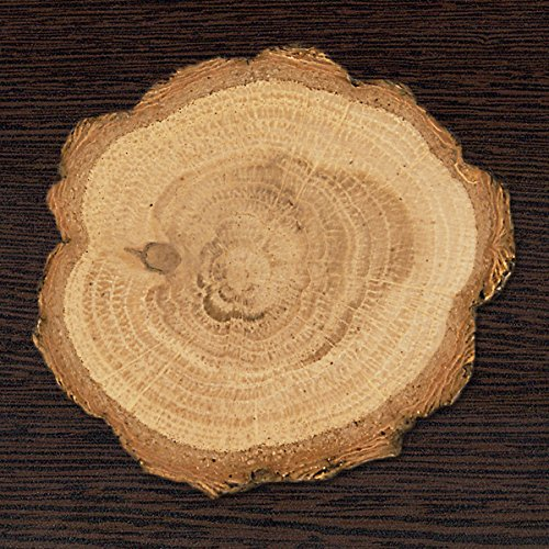 Center Gifts Personalized 2'' Wood Slice Elegant & Decorative Gift For Any Occasion by Center Gifts