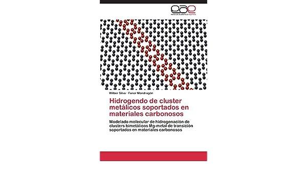 Hidrogendo de cluster metálicos soportados en materiales carbonosos: Amazon.es: Silva Wilber, Mondragón Fanor: Libros