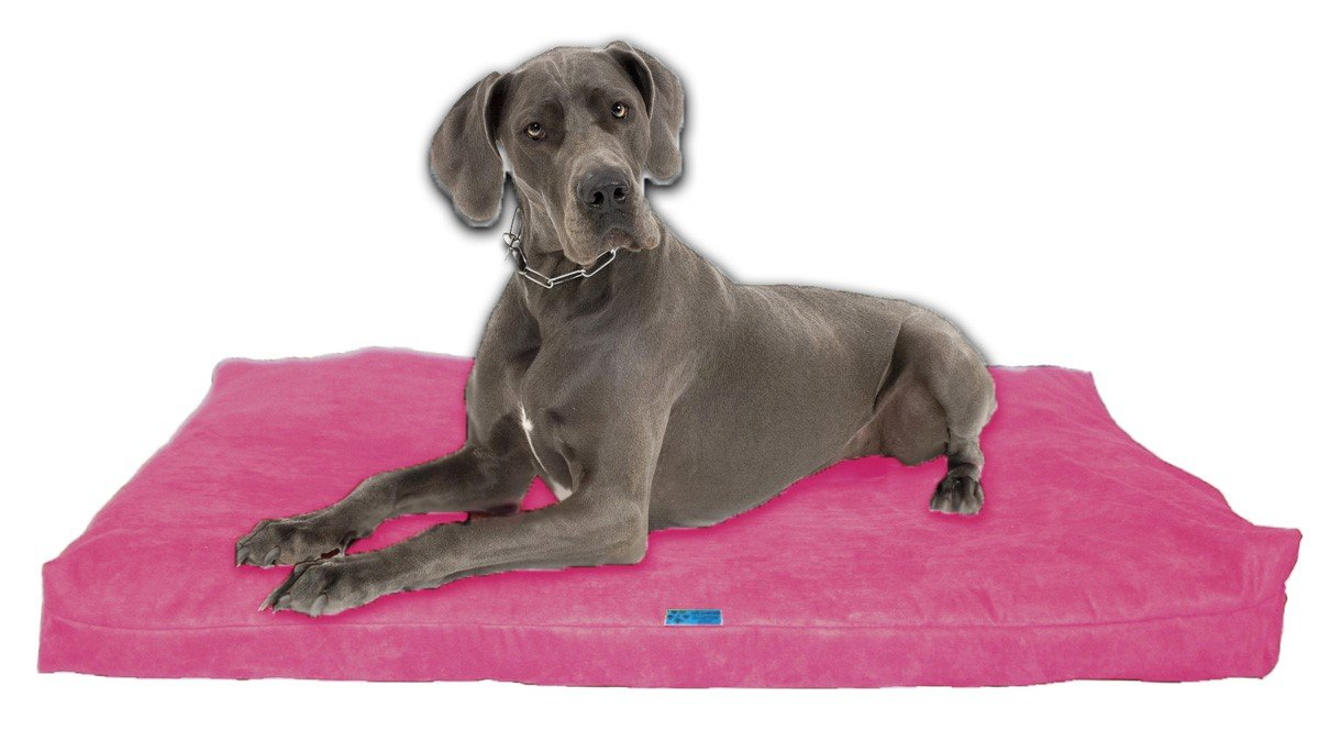 Five Diamond Collection Shredded Memory Foam Orthopedic Dog Bed,Removable Washable Passion Suede Cover,Water Proof Inner Fabric,Double Sided,Made In USA (Hot Pink,For Extra Large Breed Dogs,55'' x 37'')