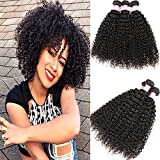 Kinky Curly Hair Grade 8A Curly Weave Human Hair Bundles Unprocessed 100% Human Hair Brazilian Kinkys Curly Hair 3 Bundles Hair Extensions Natural Black Color(8 10 12)
