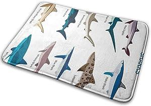 Judascepeda Doormats Shark Types of Sharks Bronze Whaler Piked Dogfish Whlae Shark Maritime Design Nautical Multicolor Welcome Door Mats with 15.7 X 23.6 Inches Floor Mats