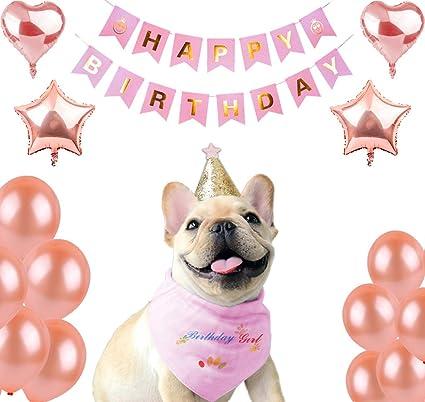 Chol Vivi Dog Bandana Birthday Scarf For Girl With