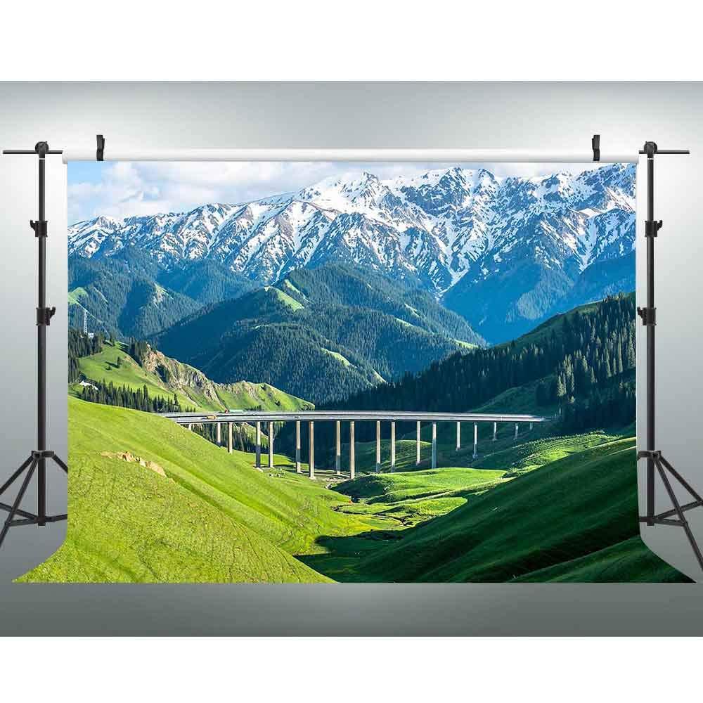 VVM 背景 自然な風景 雪山 牧草 北 Xinjiang 風景 写真撮影 スタジオ小道具 壁紙 ドレープ 7x5フィート XCVV259   B07GV6GN7R