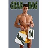 Grab Bag 14: A Gay Erotica Anthology (Grab Bag Gay Erotica Anthologies) (Volume 14)