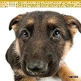 THE DOG Wall Calendar 2018 German Shepherd Dog