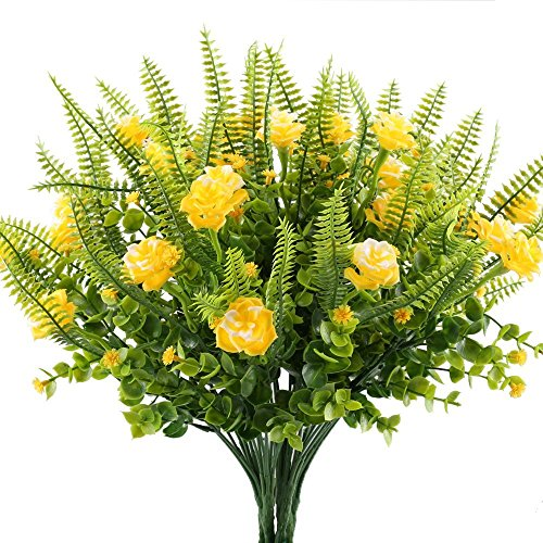 Light Yellow Garden Roses in US - 8