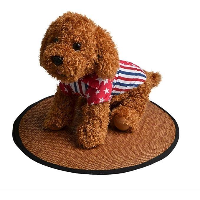 STRIR-Casa Alfombrilla de refrigeración para Mascotas, refrigerante, refrigerante, Cama de Verano para Perros, Mascotas, Cachorro, Perfecto para casetas, ...