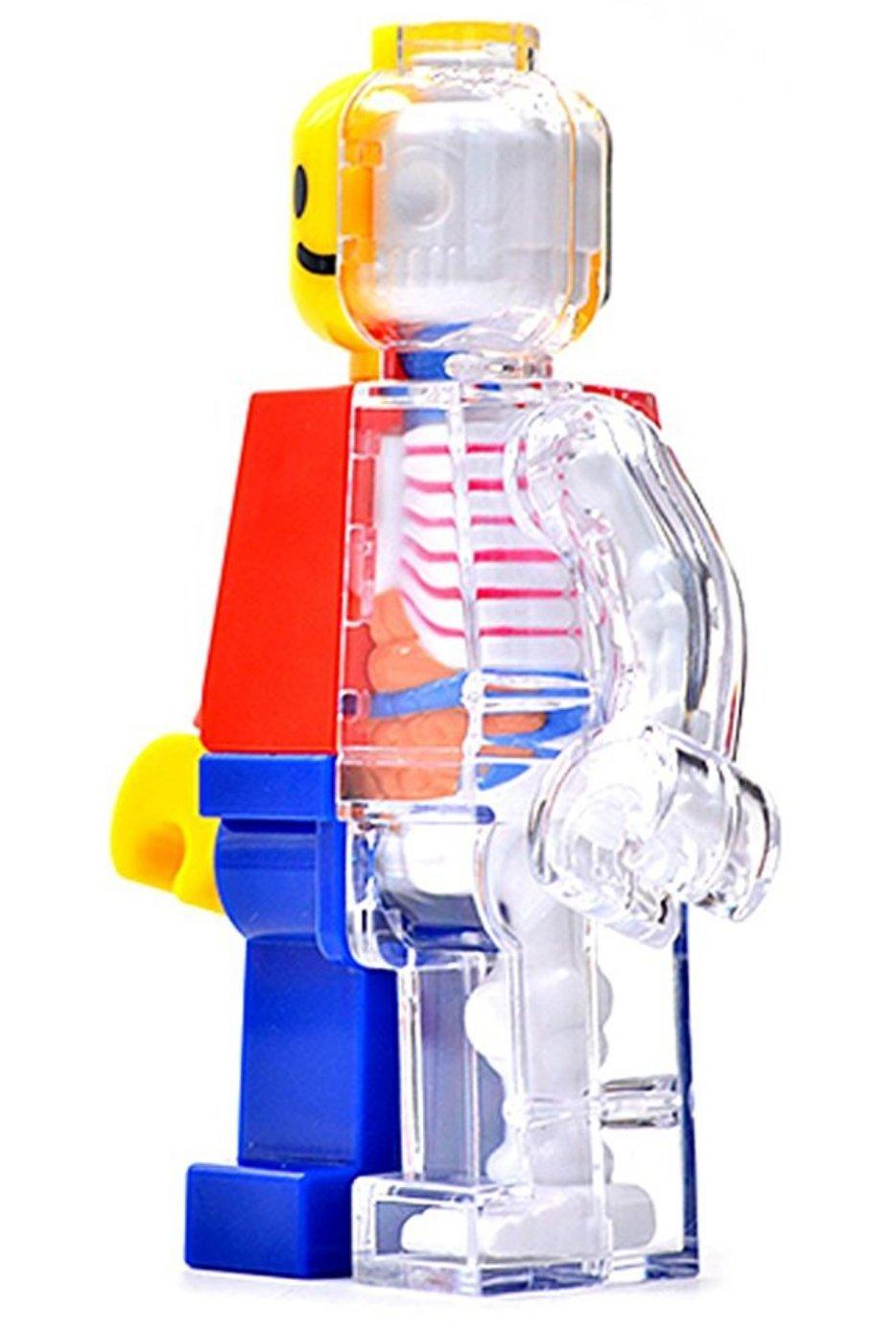 Amazon.com: 4D Master Brick Man Funny Anatomy by Jason Freeny: Toys ...