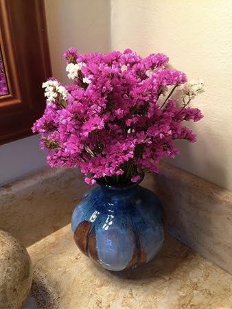 Amazon Pink Sea Lavender Armeria Maritima Miller Willd