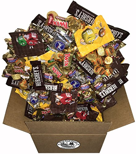 Chocolate Candy Assorted (8 Pounds) Snickers Bar, M&Ms Milk, Peanuts, Reese's, Milky Way, Twix, Hershey, York Mini Size Bulk Snacks for Halloween by West End Foods (Image #3)