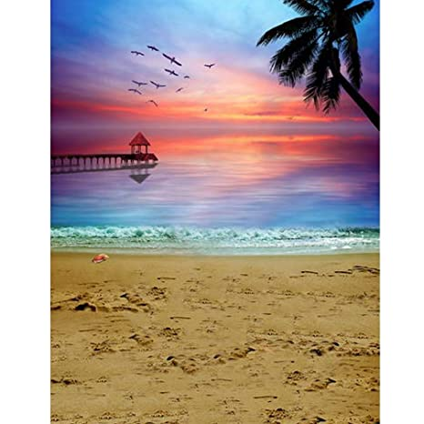 Amazon com : Beach Sunset Scenic Backgrounds Photography